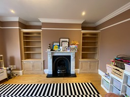 Traditional bookcase alcoves